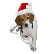Beagle Dog Christmas Pillow