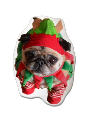 Pug Dog Christmas Pillow