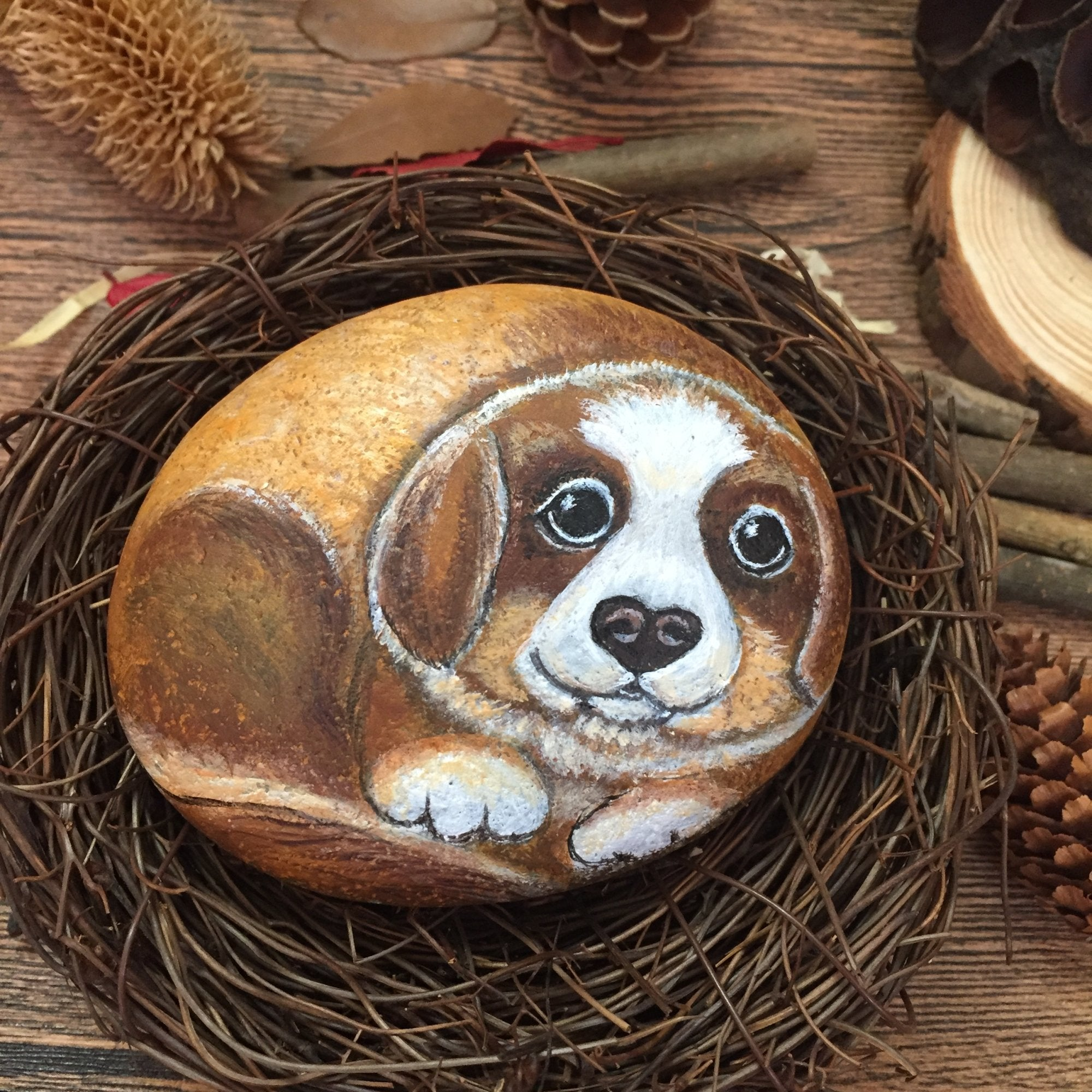 hand-painted stone for pet