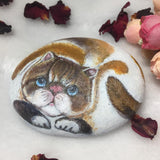 painted stone cat gift