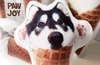 Personalized Ice-Cream Cone Pet Pillow