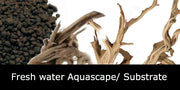 Fresh water Aquascape/ Substrate