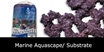 Marine Aquascape/ Substrate