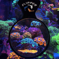 Flipper DeepSee Magnified Magnetic 4 Inch Viewer