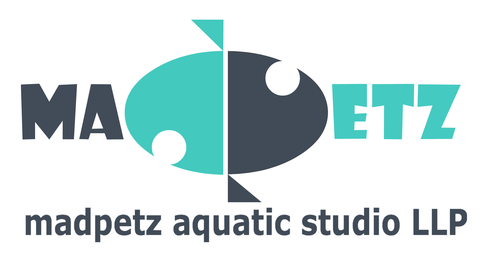 Madpetz Aquatic Studio llp