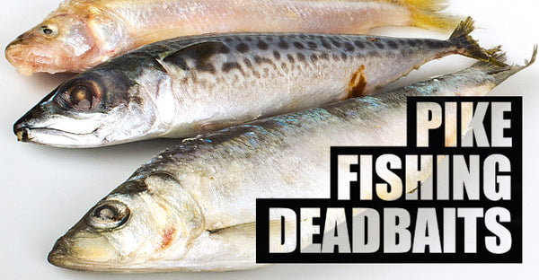 005 Deadbaits