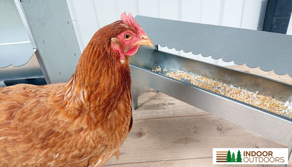 Medium Poultry Feeder Complete with Roof - Indoor Outdoors (4473194250314)
