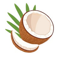 Coconut Oil Plant
