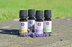 Tender Essence range of essential oils