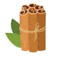 Cinnamon Essential Oil Drawing