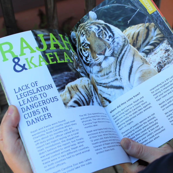 Carolina Tiger Rescue Information Guide