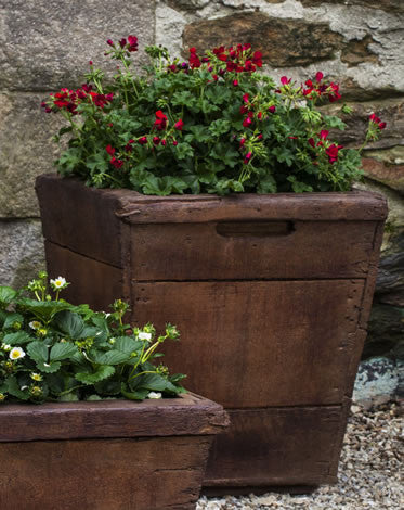 Vendange Planter, Medium