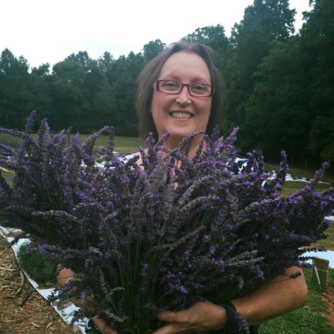 Susan harvesting our 2016 harvest! - copyright 2016 Red Oak Lavender Farm