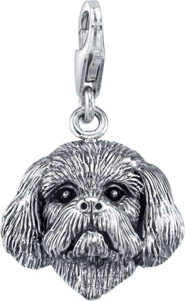 Shih Tzu (trimmed male)