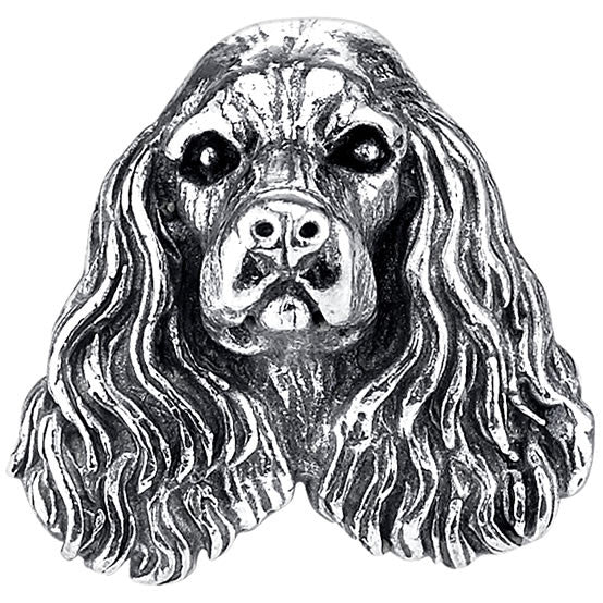 Spaniel - English Cocker Spaniel