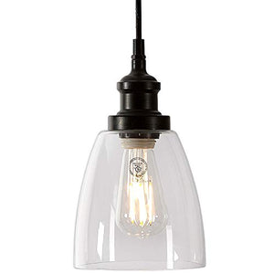 Clear Glass Pendant Hanging Light | Black Finish with LED Edison Bulb
