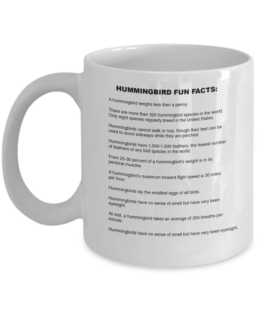 We Love Hummingbirds - Fun Facts Edition!