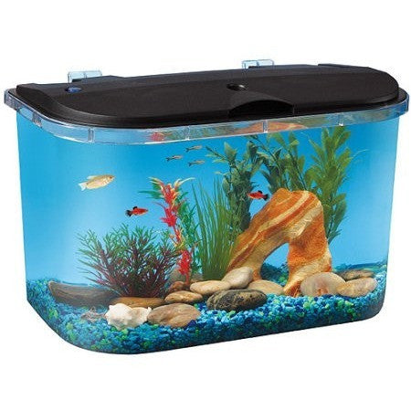 Hawkeye 5 Gallon Starter Aquarium Kit with LED Lighting - Shopatronics