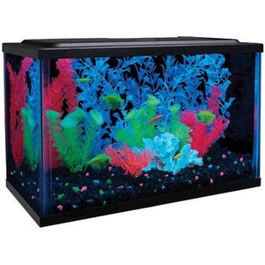 GloFish 5 Gallon Aquarium Kit - Shopatronics