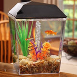 Aqua Culture 1 Gallon Aquarium Tank Starter Kit - Shopatronics - One Stop Shop. Find the Best Selling Products Online Today