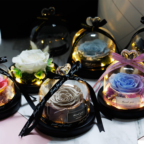 The Beauty And Beast Rose Flower Eternal Preserved In Glass Dome
