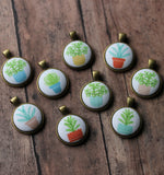 Succulent Necklaces, Potted Plant Jewelry, Cute Gift