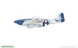 Eduard 82102 1/48 P-51D Mustang Profipack decal option 3 - BlackMike Models