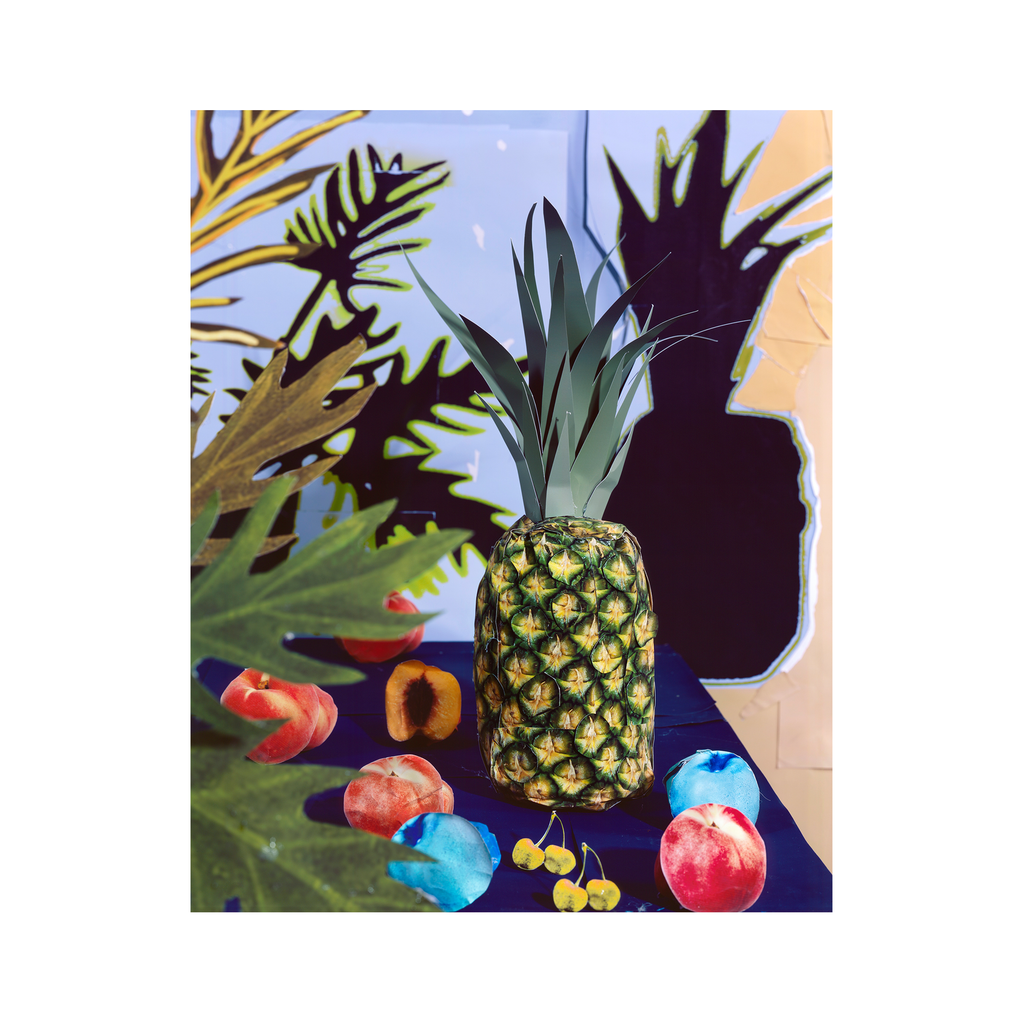 Pineapple and Leaf Shadows #13