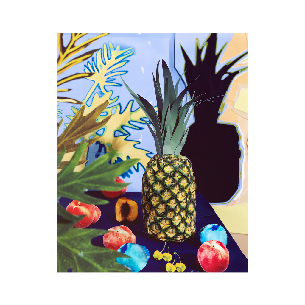 Pineapple and Leaf Shadows #2