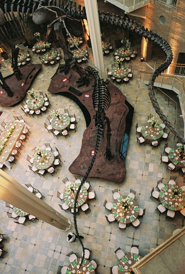 Have You Considered A Museum Wedding?