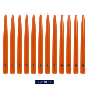 Colonial Candle Handipt Taper Candle, Unscented, 12 in, Pumpkin, 12 Pack