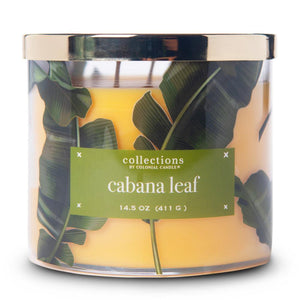 Collections by Colonial Candle, Tropical Collection, 14.5oz, Cabana Leaf