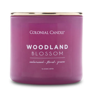 Pop of Color Scented Jar Candle, Woodland Blossom, 14.5 oz, Single