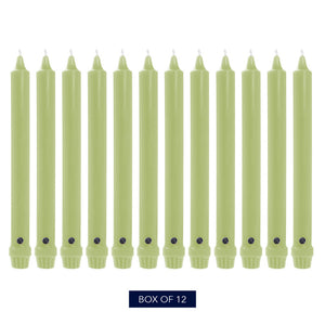 Colonial Candle Classic Taper Candle, Unscented, 8 in, Willow Green, 12 Pack