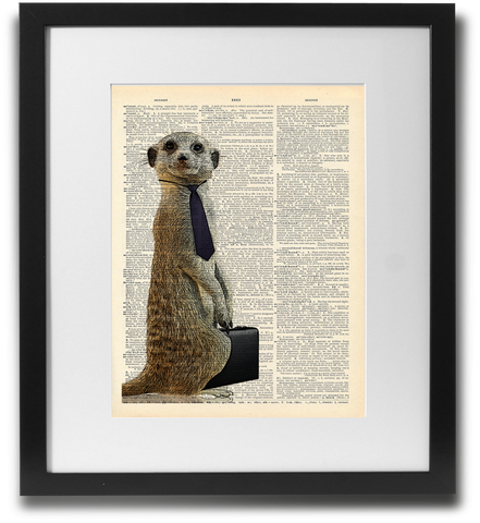 Meerkat off to work