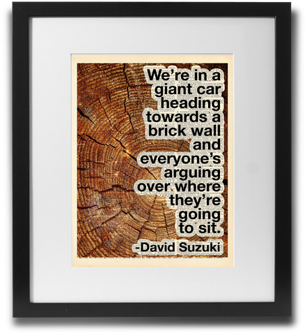 David Suzuki Quote