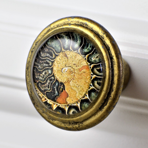 Set of 2: Brass Knob - Black and Orange Nautilus Shell