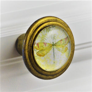 Signature Brass Knob - Dragonfly