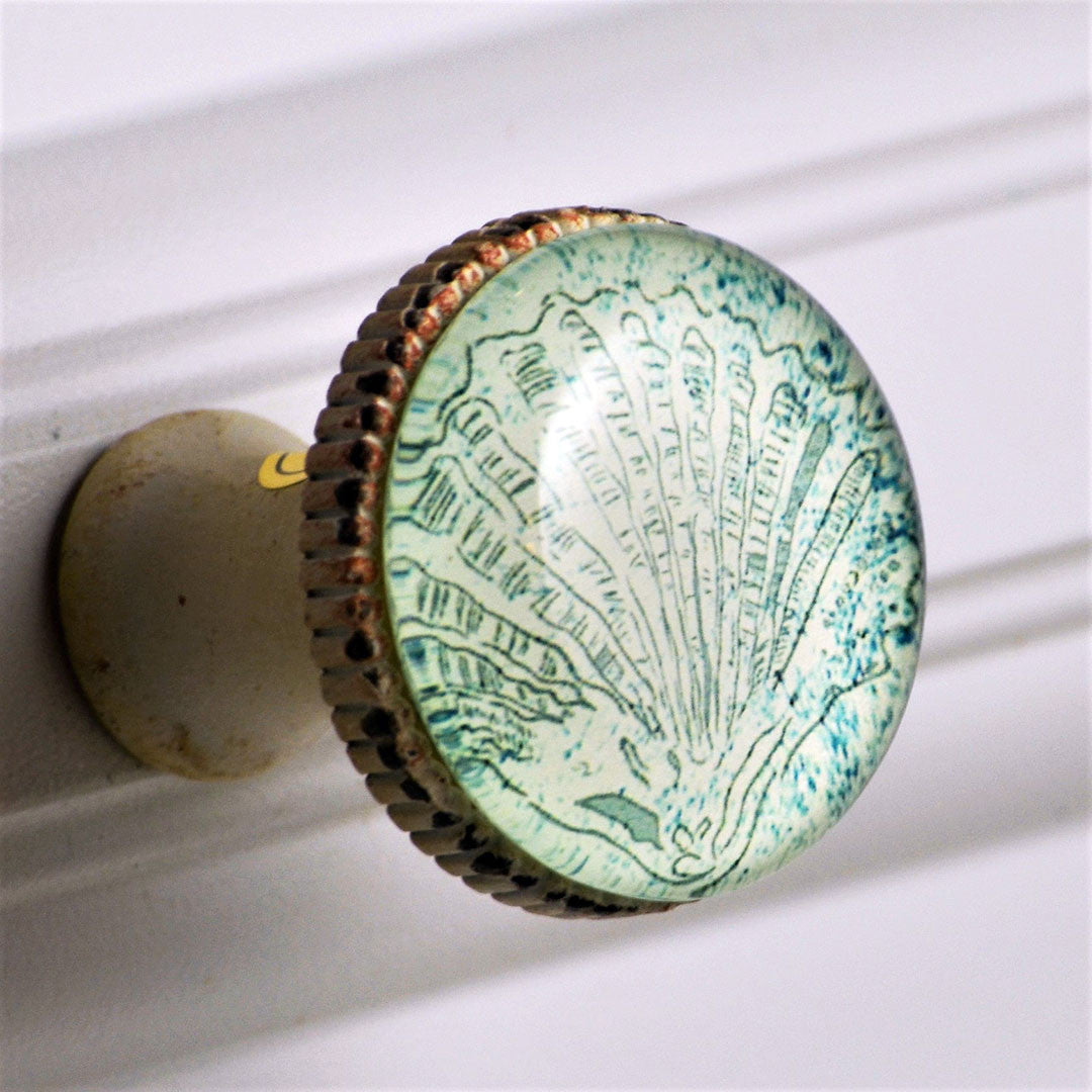 Retro Whitewashed Metal Knob – Blue Scallop Shell