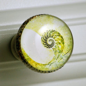 Retro Whitewashed Metal Knob – Nautilus