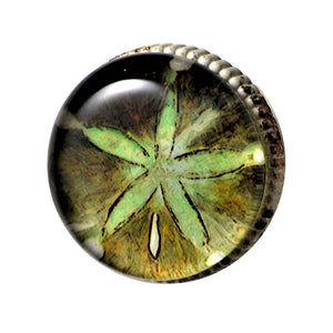 Retro Whitewashed Metal Knob – Green Starfish