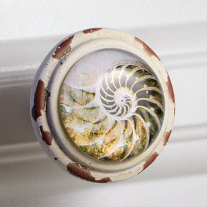 Retro Whitewashed Cream Nautilus Knobs