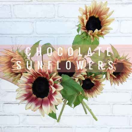 Stem Friends: CHOCOLATE SUNFLOWERS