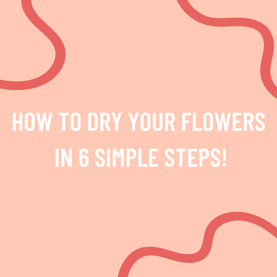 How to dry your flowers in 6 simple steps!