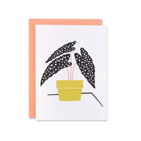 Dotty Plant Card from Black Lamb Studio - illustrated houseplant in yellow pot