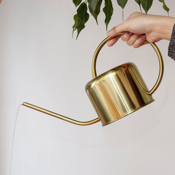 Hand held brass watering can