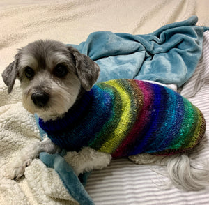 Pup Sweater Workshop