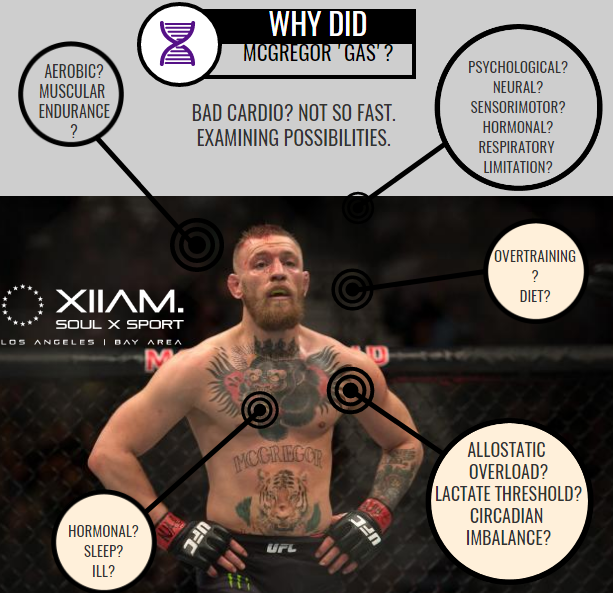 Why Did Conor McGregor Gas?  The Systems Approach