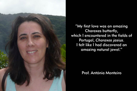 """My first love was an amazing Charaxes butterfly,  which I encountered in the fields of Portugal, Charaxes jasius.  I felt like I had discovered an amazing natural jewel."" Quote by Antonia Monteiro"