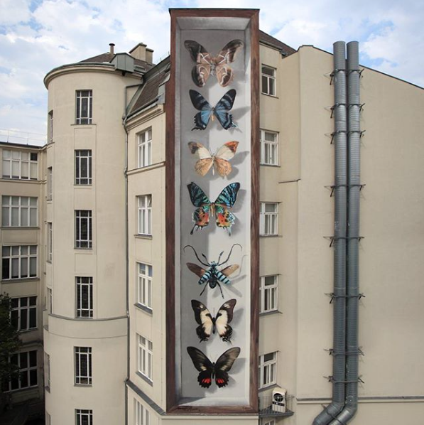 (Butterflies painted on a house wall in Vienna, Austria during Callelibre Festival, August 2017)